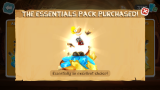 Essential pack purchased.png